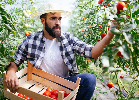 Farmers and Skin Cancer